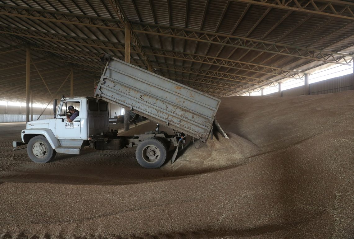 """A wheat storage. Acros combine harvesters, manufactured by Rostselmash OJSC, during the summer wheat harvest on a farm operated by 'Svetlyi"""" Group of Companies, in Kamenka village, outside Rostov, Russia, July 5, 2019. http://gk-svetlyi.ru/"""